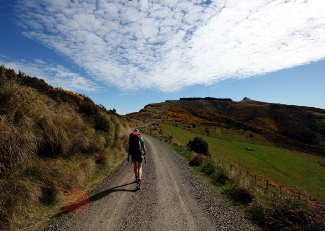 Guide til Banks Peninsula, New Zealand