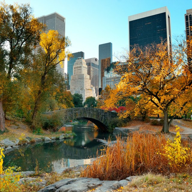 Våre favoritter: Jogging i Central Park, New York